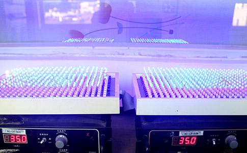 led发光二极管厂家生产环境